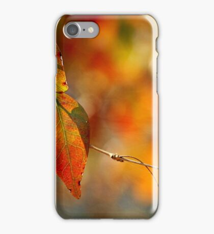 Seasonal Leaves iPhone Case/Skin