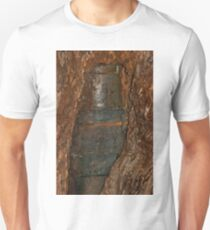 0406 Ned Kelly Armour buried in old tree trunk T-Shirt