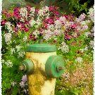 Flower Hydrant by Tracy Riddell