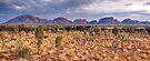 The Olgas (Kata Tjuta), Northern Territory, Australia by Michael Boniwell