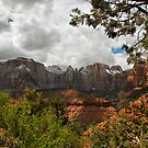 Snow Capped Mountains by Barbara Manis