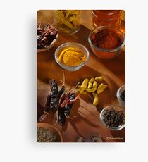 DICY SPICY Canvas Print