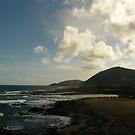 Koko head shoreline by Aaron Baker