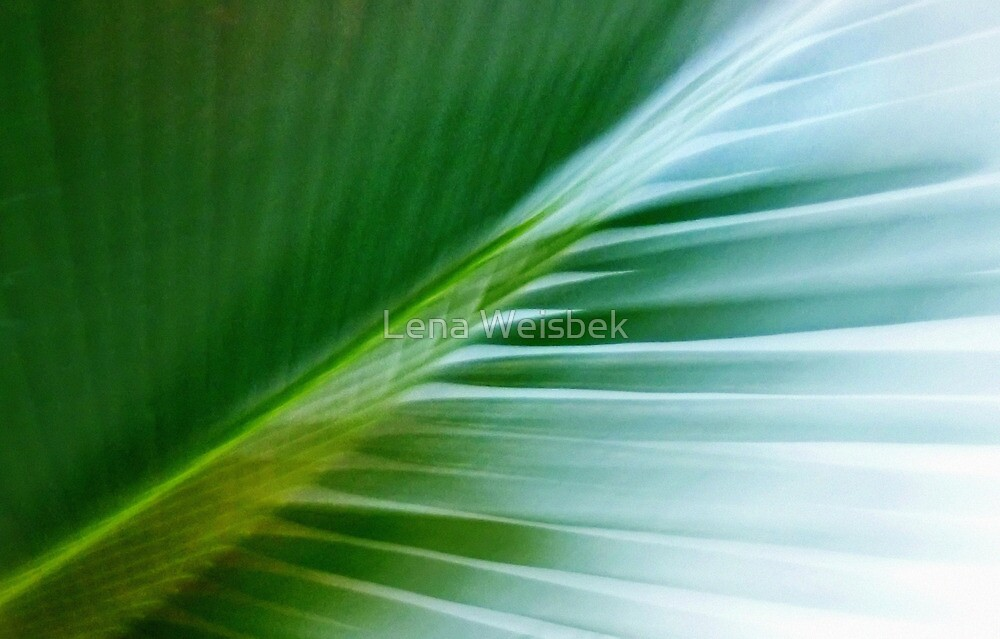 In the Green II by Lena Weiss