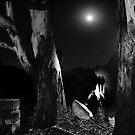 Moonlight Shadows by Tatiana R