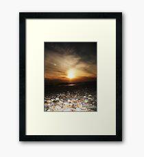 Seashells.... Framed Print