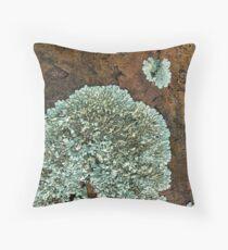 Lichen on Quartzite II Throw Pillow