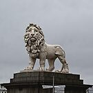Lion On Westminster Bridge by davesphotographics
