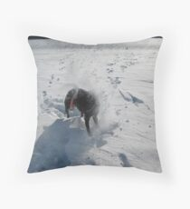 Death of a frisbee in snow Throw Pillow