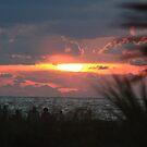 Sunset at Sand Key by Ilene Clayton