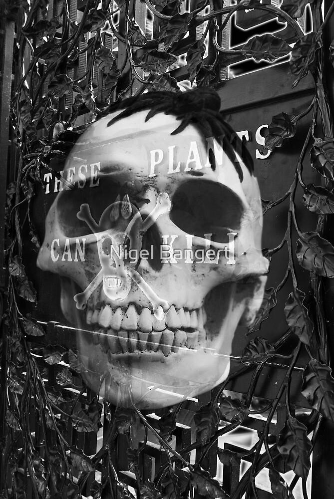 The Poison Garden  by Nigel Bangert