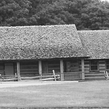 Log Cabin by Misawalk