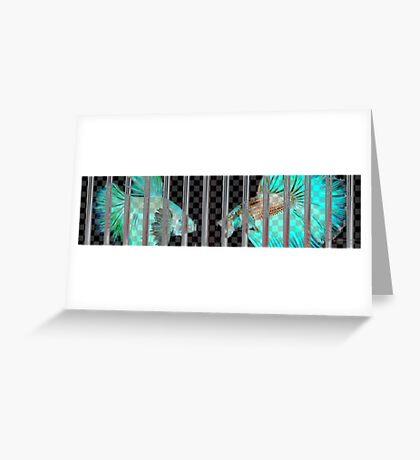 Negative Fish Behind Bars on Transparency Grid Greeting Card