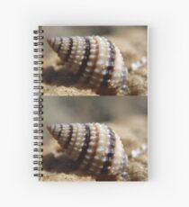 Sea Shell Spiral Notebook