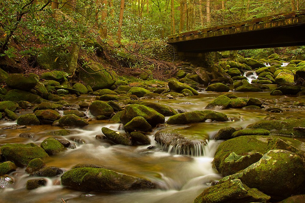 Lazy stream in Great  Smoky Mtns. by Rick Montgomery