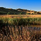 Victoria Outback by dazzleng
