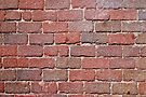 Brick Pavers 20100807 by MarjorieB
