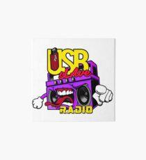 USB sLAve Radio Art Board Print