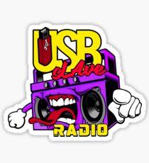 USB sLAve Radio Sticker
