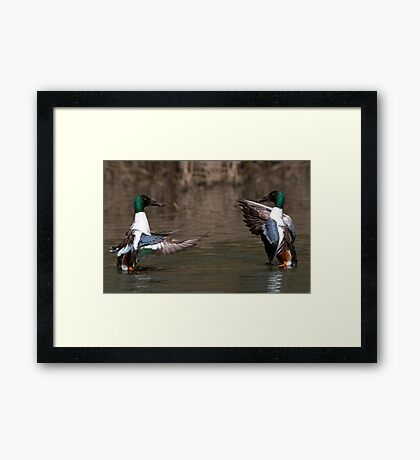 Dance To The Music! Framed Print