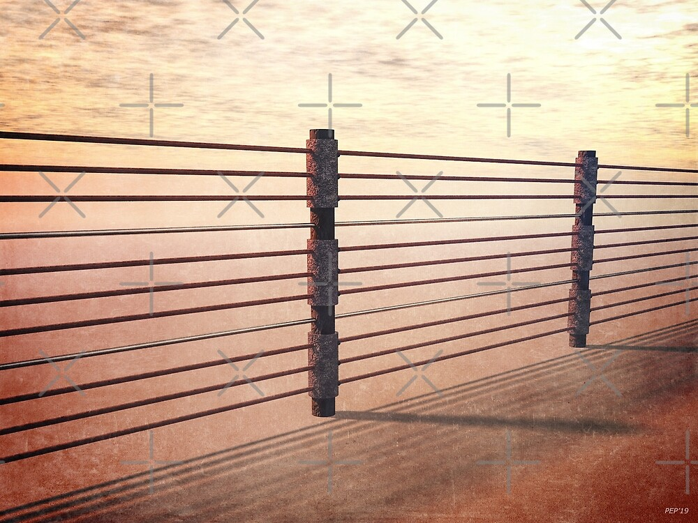 Border Fence by morningdance