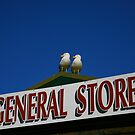 general store. wilsons prom - victoria by tim buckley | bodhiimages