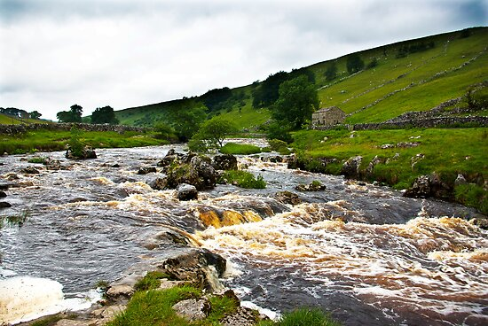 River Wharfe at Yockenthwaite  #2 by Trevor Kersley