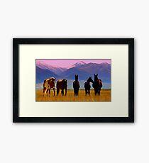 Loneliest Road In America Wild Horse Herd  Framed Print