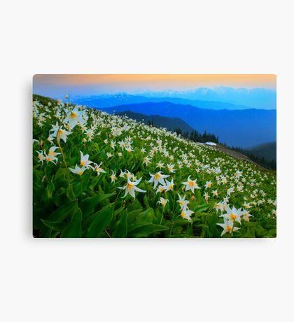 Flower Avalanche Canvas Print