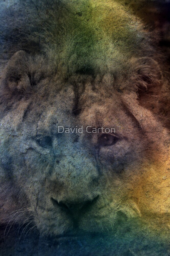 In her sleep she dreams of Africa by David Carton