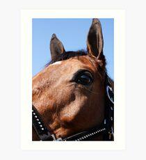Portrait of a Horse, I Art Print