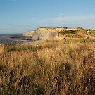 Clifftop at Kilve Beach by kernuak