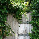 The Garden Gate by Debra Fedchin