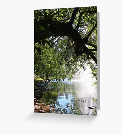 Cool Sanctuary 2 Greeting Card