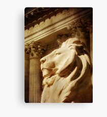 Lion in the Sun Canvas Print
