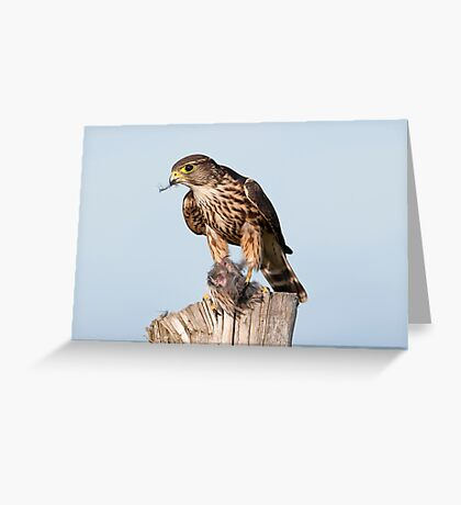 Merlin with catch Greeting Card