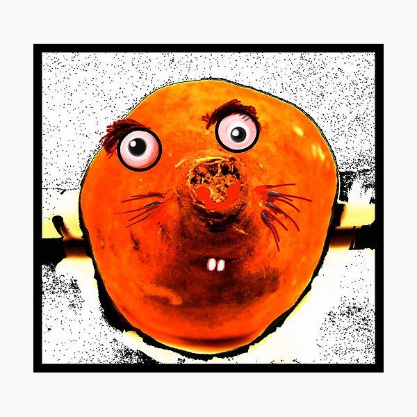 Sweet Potato Photographic Print