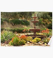 Cactus Fountain Poster