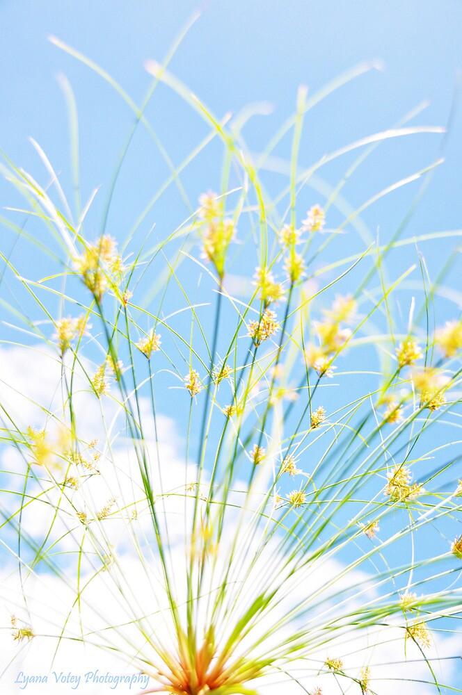 Nile Plant by Lyana Lynn