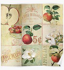 Apple Blossoms I Poster