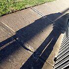 Shadow Angel by Danielle Boylan