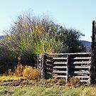 Gates by Julia Washburn