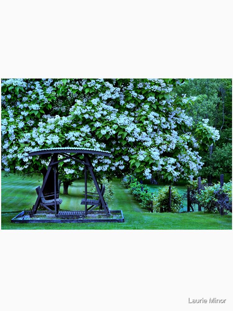 Catalpa-Baum in voller Blüte von LaurieMinor