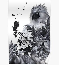 Philippine Birds Poster