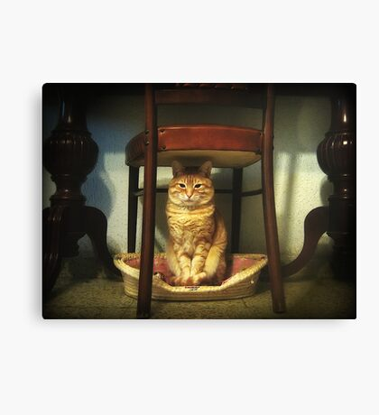 Please, you step into my office...now!!! Canvas Print