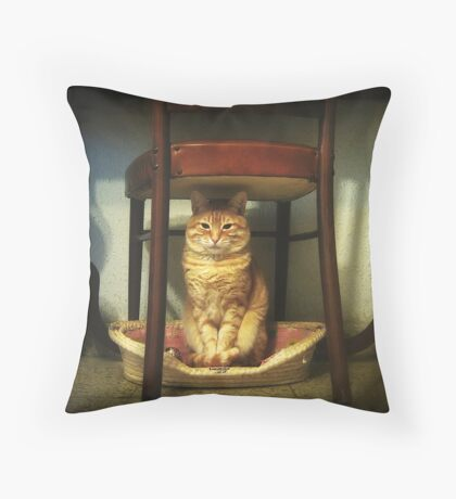 Please, you step into my office...now!!! Throw Pillow
