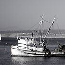 The Fishing Vessel San Giovanni by Cupertino