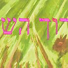 BARUCH HASHEM IN PINK by hdettman