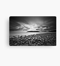 In the Begining Canvas Print
