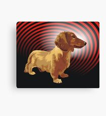 George dachshund Canvas Print